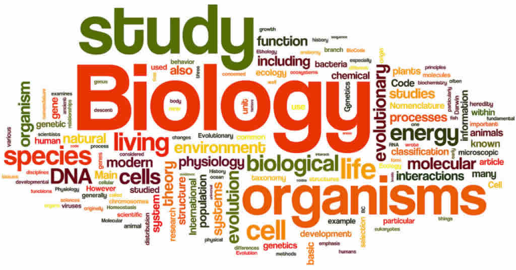 biology hl sl tutor tuition home tutoring coaching class homework  biology coaching tutoring tutorial online class ib myp igcse cbse icse neet ap as a level